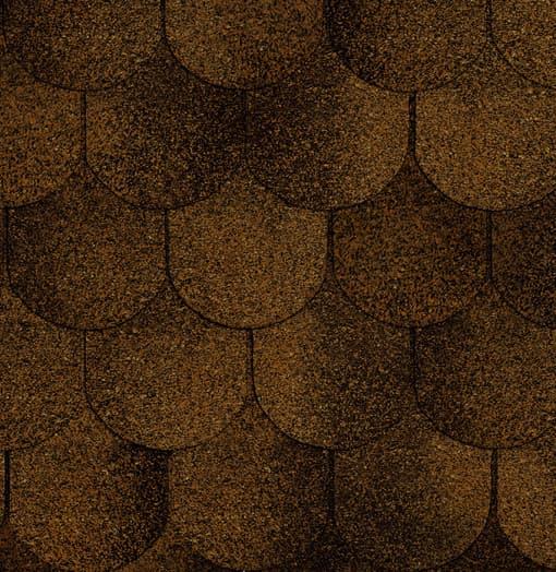 Руфлекс Орнами (Бобровый хвост) кофе