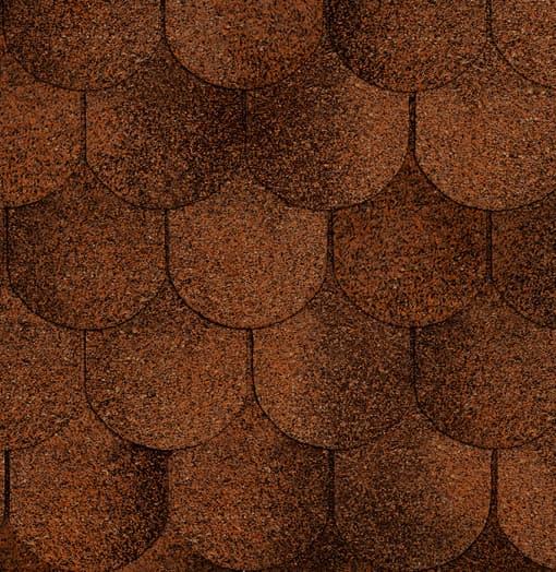 Руфлекс Орнами (Бобровый хвост) красная глина